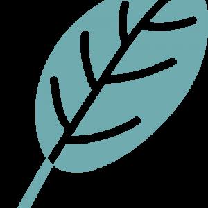leaf-logo--teal